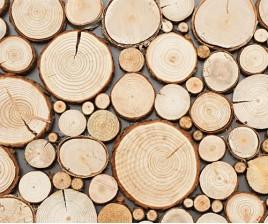 Wood-Line Pure